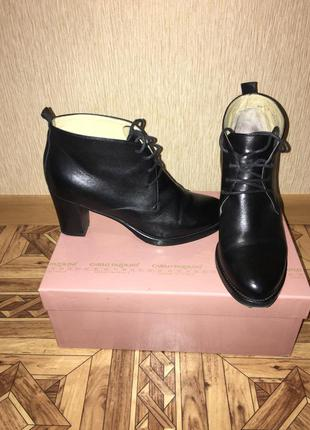 Кожаные ботинки carlo pazolini