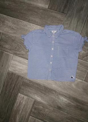Летняя блуза в полоску