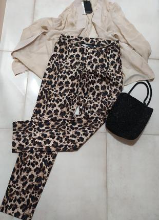 Штаны леопардовый принт esmara