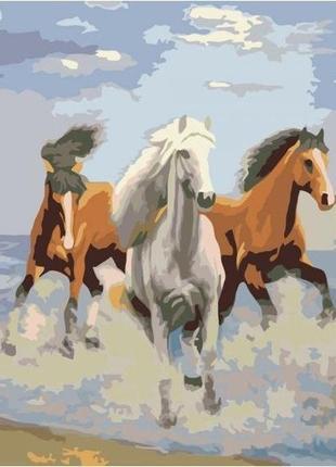 "Картина по номерам идейка ""свежий ветер"" 40х50 см. kho2430"