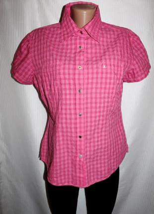 Рубашка тенниска хлопок клетка розовая gaastra 48-52р