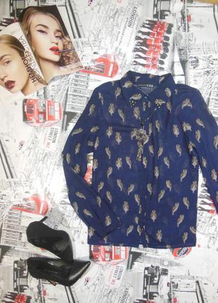 Блуза принт сова
