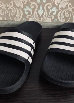 Тапочки adidas