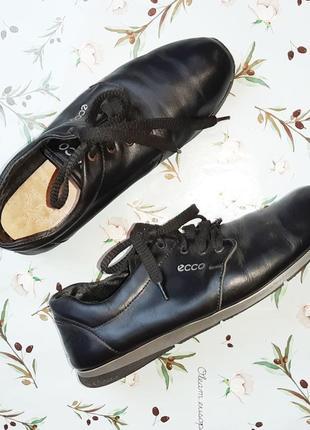 🌿1+1=3 фирменные черные кожаные женские кроссовки ecco натуральная кожа, 39 размер