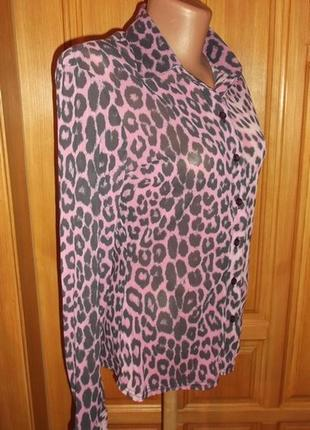 Рубашка  блуза сетка стильная расцветка р. 12-m