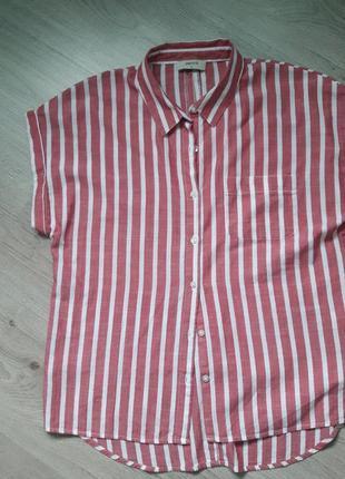Стильная коттоновая рубашка-сорочка