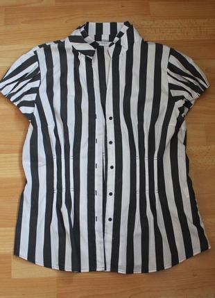 Стильная блуза в полоску zara