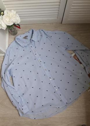 Модная рубашка рисунок колибри размер хл h&m