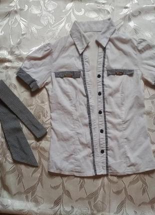 Блуза - рубашка с галстуком