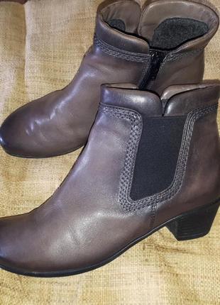 Кожа ботинки gabor