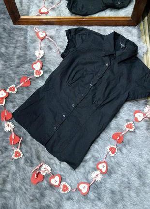 Базовая хлопковая блузка кофточка из коттона amisu