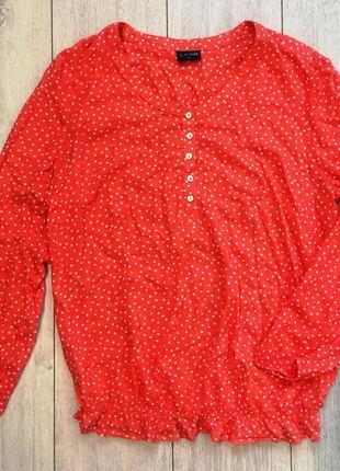 Очень красивая блуза коралового цвета в горох