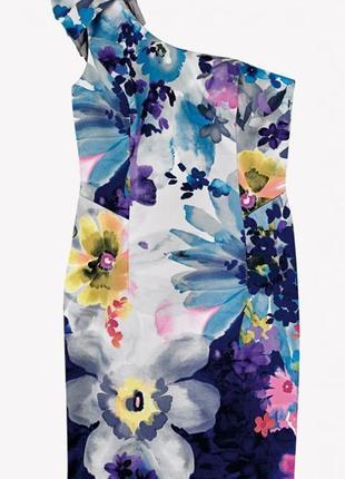 Платье большого размера coast