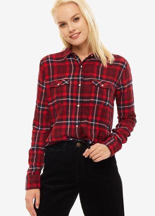 Жіноча рубашка lee  оригінал нова