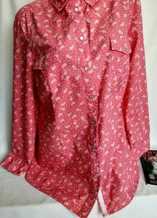 Кораллово-розовая рубашка на кнопках , принт пецсли  р. 2-3xl, от ulla popken
