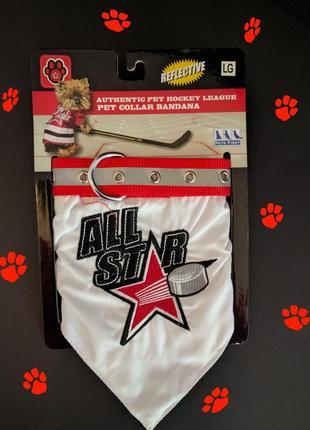 Ошейник-бандана для собаки all star из сша
