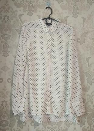 Блуза в горох белая большой размер