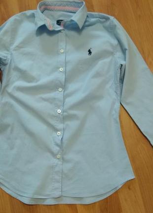 Рубашка небесного цвета polo