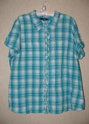 Стильная блузка-рубашка,королевский размер,для больших модниц debenhams