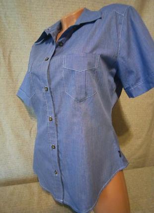 Рубашка блуза голубая приталенная