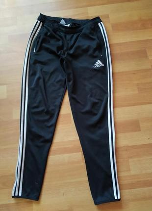 Спортивні штани брюки