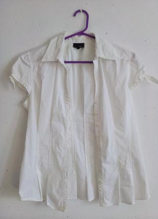Блузка базовая с коротким рукавом