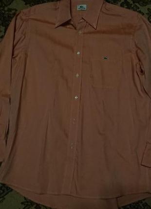 Брендова фірмова рубашка сорочка lacoste,оригінал,нова,розмір l-xl(43).