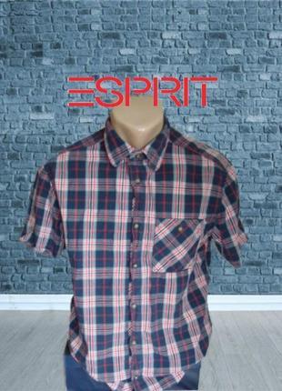 🌴🌴esprit regular fit хлопковая мужская рубашка короткий рукав м🌴🌴🌴