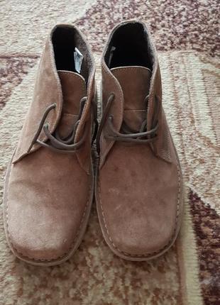 Ботинки hobos  натуральный замш