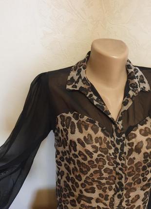 Леопардовая блуза рубашка блузка прозрачная с длинными рукавами