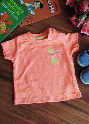 Классная трикотажная футболка st.bernard на 3 месяца.