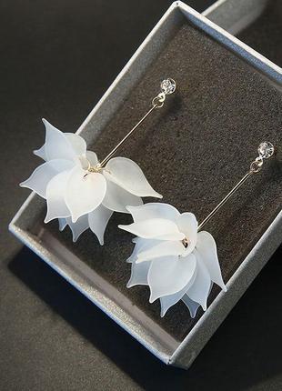 Сережки гвоздики вечерние с цветком белым