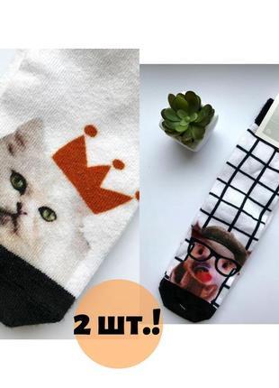 2 пары носков с прикольными рисунками - свинка и котик, 35-38 размер