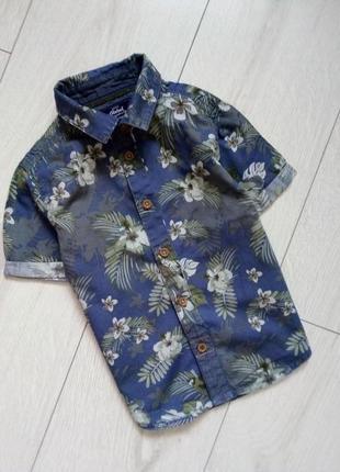 Літня сорочка тропічний принт