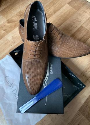 Стильные кожаные мужские туфли carlo delari