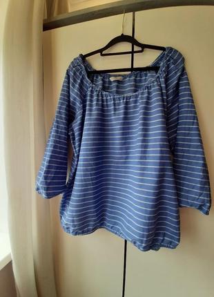 Блуза, кофта жіноча