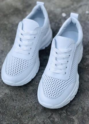 Шкіряні кросівки з перфорацією 💥