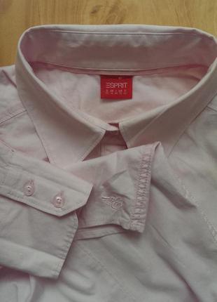 Рубашка,блуза esprit