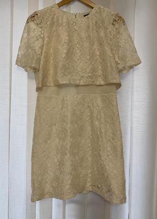 Мереживне плаття pc clothing