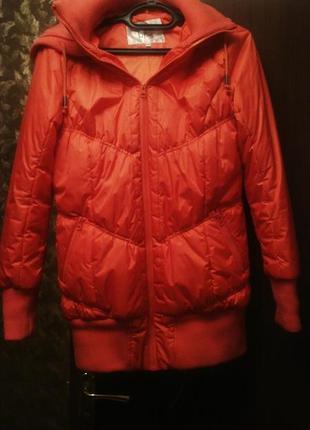 Модная куртка без меха, демисезонная