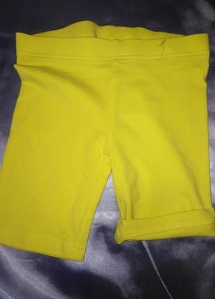 Яркие шорты-бриджи alive