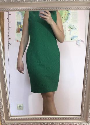 Зелена сукня calvin klein