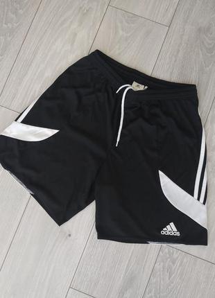 Спортивні шорти adidas climalite розмір m