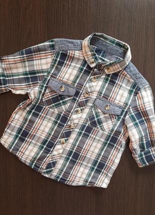 Рубашка в клетку matalan
