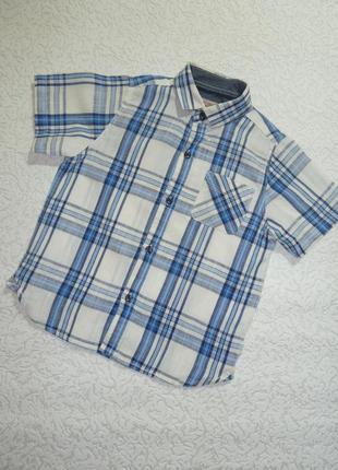 Летняя рубашка next на 3 года