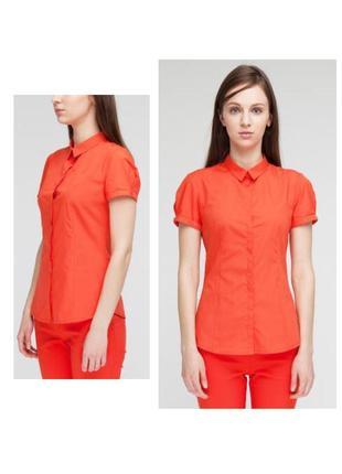 Летняя рубашка кораллового цвета