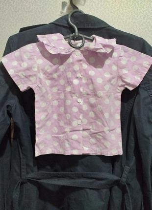 Блуза, рубашка, х/б.(2576)