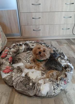 Корзинка лежак для кота  или собаки