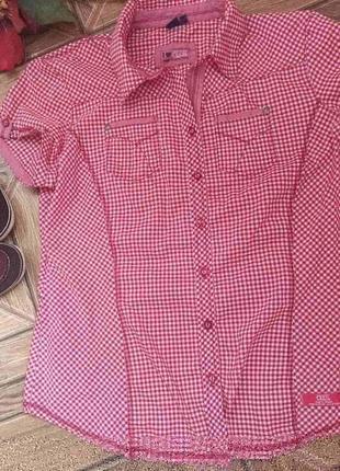 Актуальна рубашка поло в клетку пог 56, размер пишни