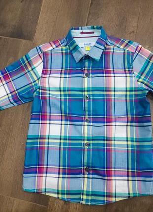 Стильная рубашка в клетку от ted baker, 5 лет. новая!